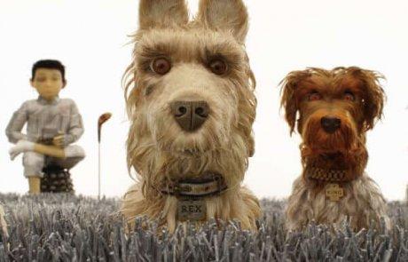 """""""אי הכלבים"""" – מענג ומאתגר"""