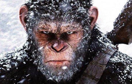 """""""כוכב הקופים : מלחמה"""" – מטען אחר"""