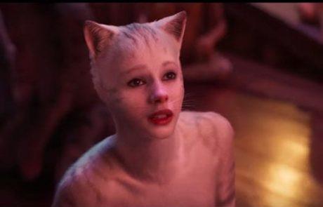 """""""קאטס"""" – חתולים תחת מתקפה, 6 בסולם אורשר  . גידי אורשר"""